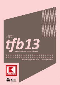 Introducere în TFB13