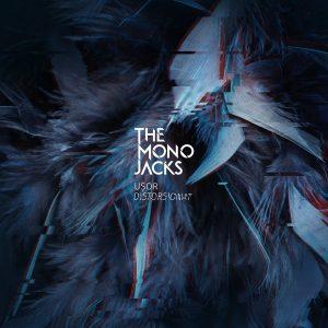 Mono jacks